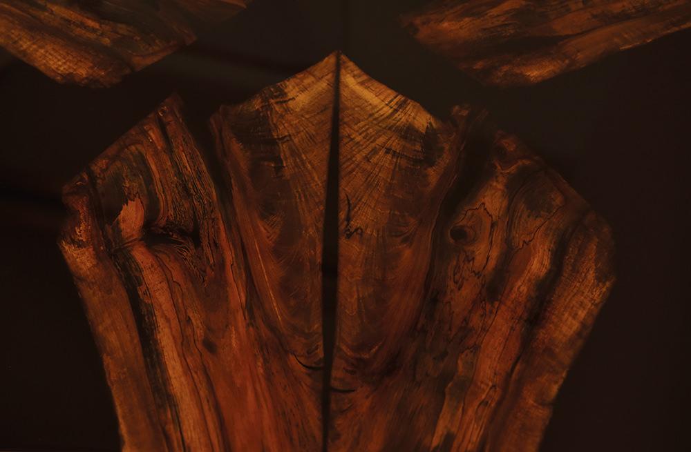 Tisch-Nussbaum-Fächer-Strotzer